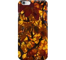Colourful Sunny Autumn Patterns iPhone Case/Skin