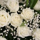 White Wedding Roses by Robyn Williams