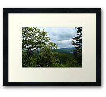 Fern Lake near Cumberland Gap Framed Print