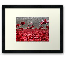 Tower Of London Remembers Framed Print