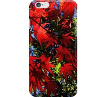 Maple In Bloom iPhone Case/Skin