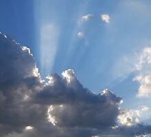 Cloudy Day Rays by Dorothy Berry-Lound
