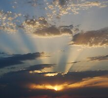 Rays at Sunset by Dorothy Berry-Lound