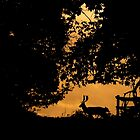 Stag Silhouette by Mike Garner