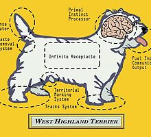 Originaldogco WEST HIGHLAND TERRIER ANATOMY by Lisa Rotenberg