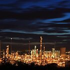 Grangemouth Refinery by Maria Gaellman