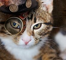 Steampunk Funny Cute Cat by LouiseCantwell