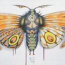 orange moth by federico cortese