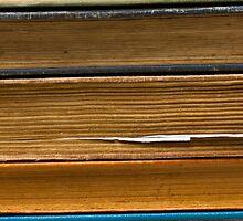 Reading is fun by Edward Fielding