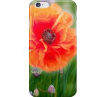 First Poppy iPhone Case/Skin