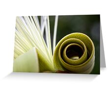 Pseudobombax flower abstract Greeting Card