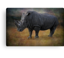 K is for ........killed for their horns Canvas Print