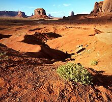 Monuments in Scrub, Sand and Rock - Monument Valley, Utah, USA by Sean Farrow
