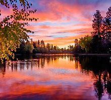 First Brilliance: Mirror Pond by John Williams