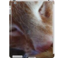 kitty nose iPad Case/Skin