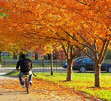 Cycling through Autumn, New York City by Alberto  DeJesus