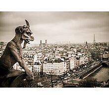 Gargoyles of Notre-Dame Photographic Print