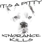 It's A Pitty by Zdogs