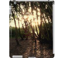 Autumn Sunshine iPad Case/Skin
