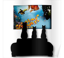 Charming Cats Watching Aquarium Poster