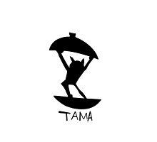 Haikyuu!! - Tama the Dancing Cat (Tsukishima Akiteru) by TrashCat