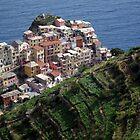 Manarola - Cinque Terre, Italy by John Kleywegt