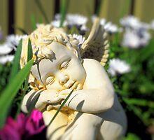 Angel In My Garden by danita clark
