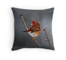 ON A COLD MORNING Throw Pillow