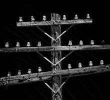 Telegraph Line by njordphoto