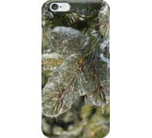 Mother Nature's Christmas Decorations - Pine Branches iPhone Case/Skin