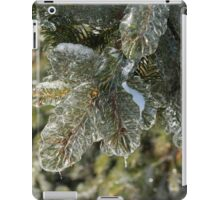 Mother Nature's Christmas Decorations - Pine Branches iPad Case/Skin