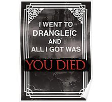 I Went To Drangleic... Poster