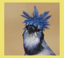 Is that you Don King? - Blue Jay Kids Clothes
