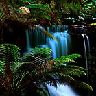Horseshoe Fall Tasmania by Angelika  Vogel