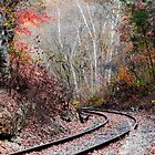 Autumn Tracks by mcstory