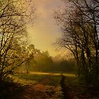 Take Nature with you by Joey Kuipers