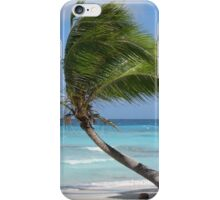 Against The Winds iPhone Case/Skin