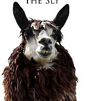 The Sly by J. L. Gould