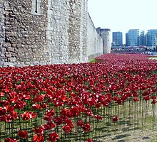 Sea of poppies -Tower of London by InterestingImag