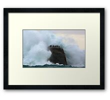 Are you SURE we're insured?! Framed Print