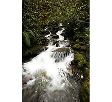South Island River Photographic Print