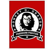 Monkey D. Dragon X Che Photographic Print