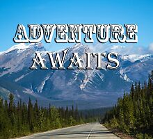 Adventure Awaits by J. L. Gould