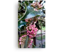 Berry Sharp Pink & Deep Green Canvas Print