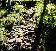 0318  Jenny's Garden by Peter Hogarth