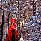 The Red Queen and the Fox by Deborah McGrath