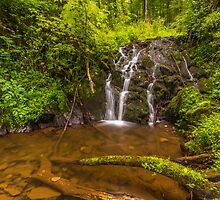 Waterfall in the forest by Natuuraandemuur