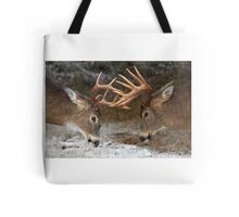 Clash of the Titans - White-tailed deer Bucks Tote Bag