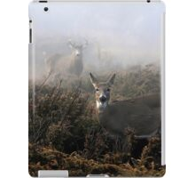 The rut is on! - White-tailed Doe and Buck iPad Case/Skin