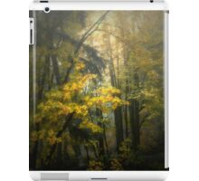 Colors in the Fog ~ Fall Colors ~ iPad Case/Skin